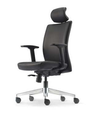 Ergo Presidential High Back Leather Office Chair