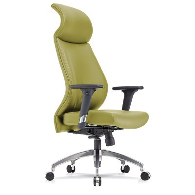 F4 Unique Backrest Office Chair For Longer Sit