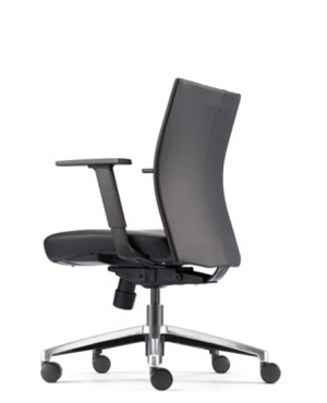 Mesh 2 Executive Low Back Leather Office Chair